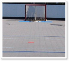 Dek Hockey Rink