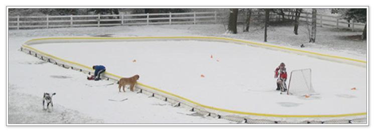 Reading Ice Cap - Ice Dogs Youth Hockey
